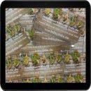 100 Stück Plastikkarten in Scheckkartenformat 85.6...